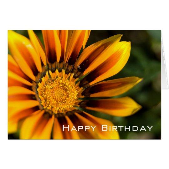 Gazania | Happy Birthday Card