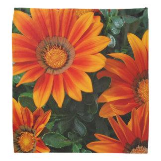 Gazanie Flowers Bandana