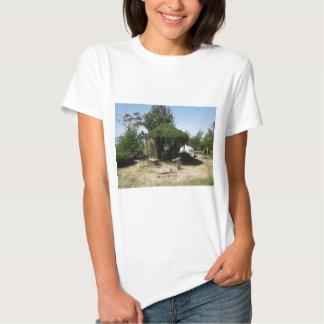 Gazebo with Vines Shirts