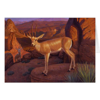 Gazelle Greeting Card