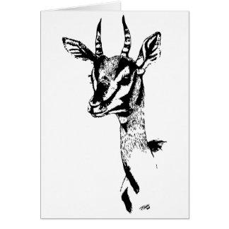 Gazelle study Birthday Card