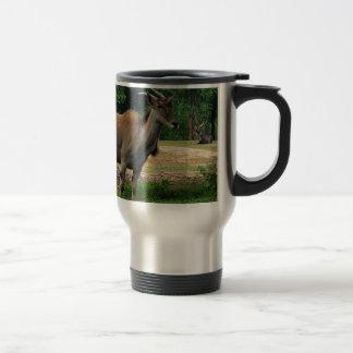 Gazelle, wild animal zoo,羚. 15 oz stainless steel travel mug