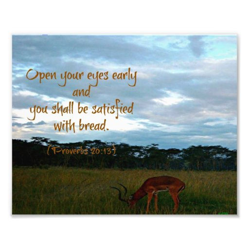 Gazelle with Proverbs Bible verse Open your eyes Photographic Print