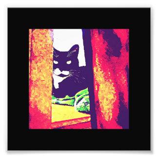 Gazing Lucy Painting Photo Art