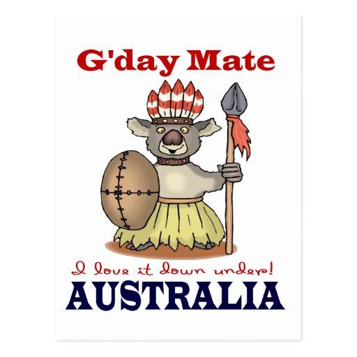 G'Day Mate Koala Postcards