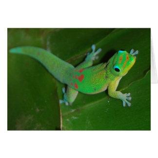 Gecko Cruising at Night Card