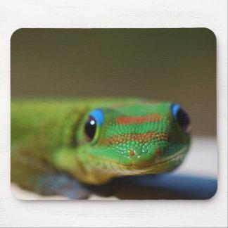 Gecko Friend Mouse Pad