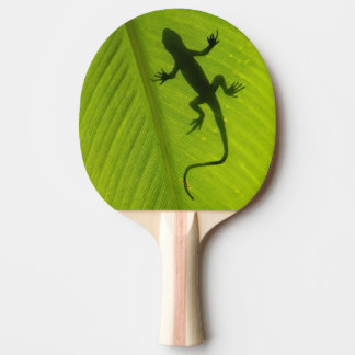 Gecko Silhouette Ping Pong Paddle