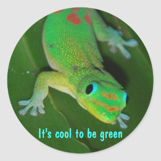 Gecko viewpoint - It's cool to be green Classic Round Sticker