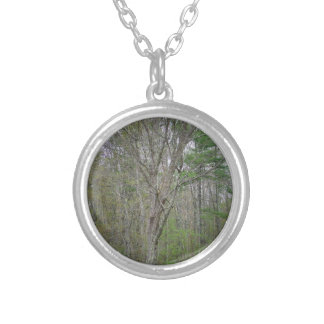 GEDC0491 (2).JPG SILVER PLATED NECKLACE