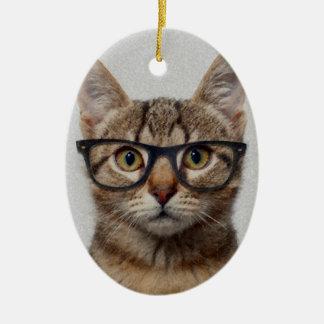 Geek Cat Ceramic Oval Decoration