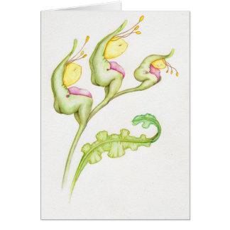 Geelkopjes illustration plants card