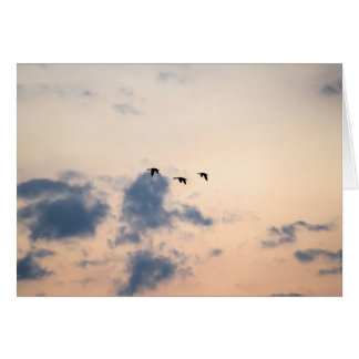 Geese and Soft Sunset Card