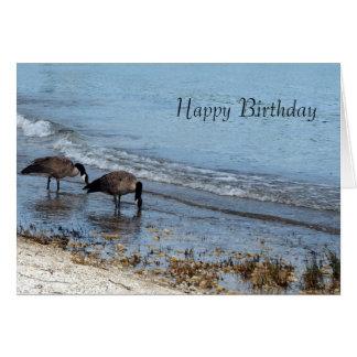 Geese Birthday Card