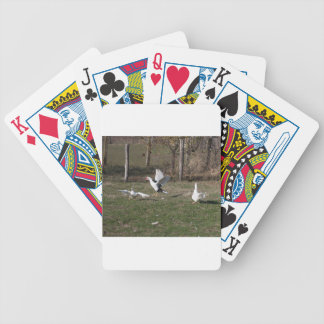 Geese fighting bicycle playing cards