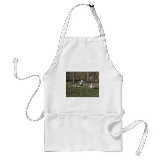 Geese fighting standard apron