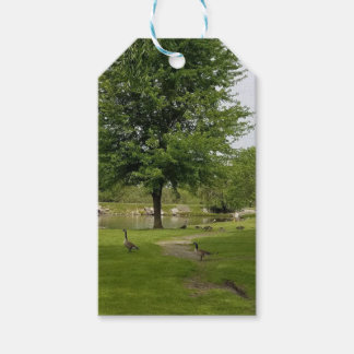 Geese Gift Tags