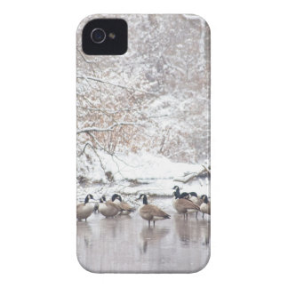 Geese in Snow Case-Mate iPhone 4 Case