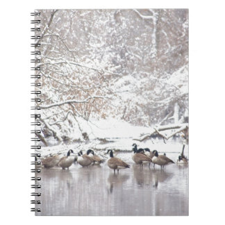 Geese in Snow Notebook