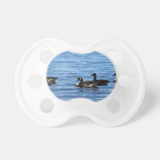 Geese on Lake Dummy