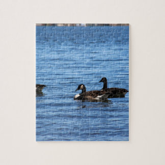 Geese on Lake Jigsaw Puzzle