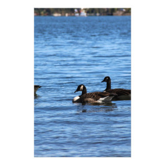 Geese on Lake Stationery