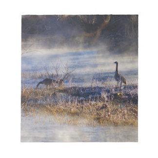 Geese Taking a Break Small Notebook Notepad