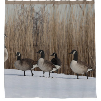 Geese Waterfowl on  Shower Curtain