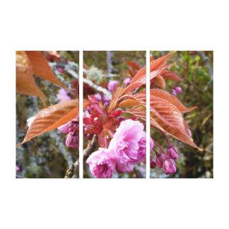 Geisha Cherry Blossom ~Canvas~ Stretched Canvas Print