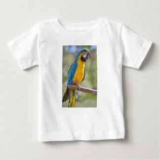 Gelbbrustara macaw on perch baby T-Shirt