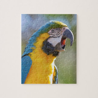 Gelbbrustara macaw on perch jigsaw puzzle