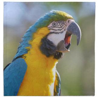 Gelbbrustara macaw on perch napkin