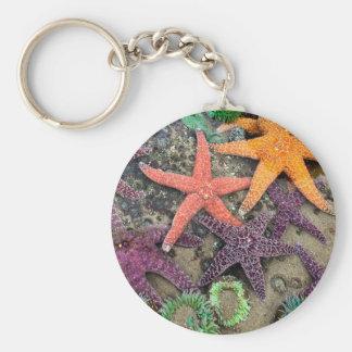 Gems of the sea key chain