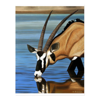 Gemsbok, Africa, Wild Life, Animal, Oil Painting Postcard