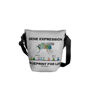 Gene Expression Blueprint For Life Homeobox Genes Courier Bag