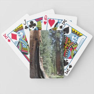 General Sherman Tree- Sequoia National Park Card Decks