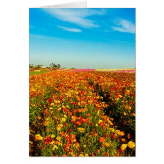 Generic Greating Card Flower Field