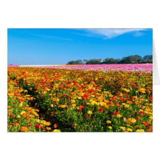 Generic Greating Card Flower Fields