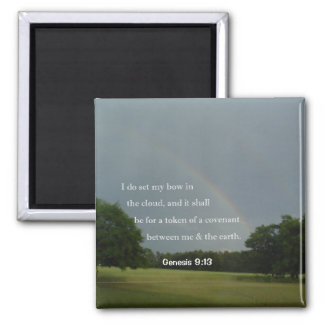 Genesis 9:13 Rainbow Magnet
