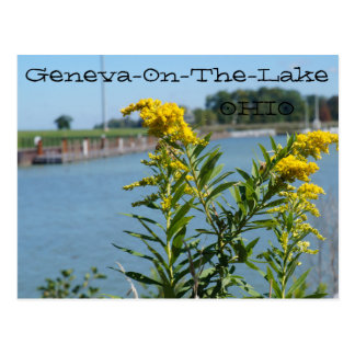 Geneva-On-The-Lake, Ohio Postcard, Goldenrod & Sky Postcard