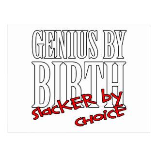 Genius Slacker Postcard