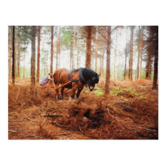 Gentle Giant - Draft Horse at Work in the Forest Postcard