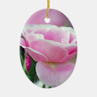 Gentle pink rose and rose buds ornament