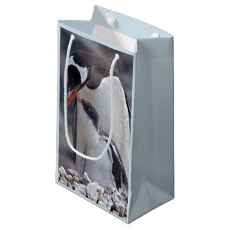 Gentoo and Chick Gift Bag