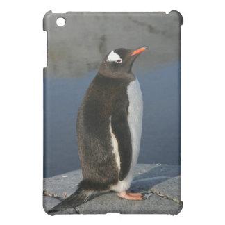 Gentoo Penguin iPad Mini Covers