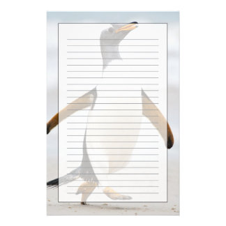 Gentoo Penguin Personalised Stationery