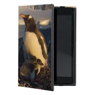 gentoo penguin, Pygoscelis Papua, parent with iPad Mini Covers