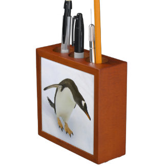 Gentoo penguin Pygoscelis papua) standing Desk Organisers