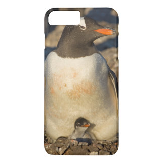 gentoo penguin, Pygoscelis papua, with newborn iPhone 7 Plus Case