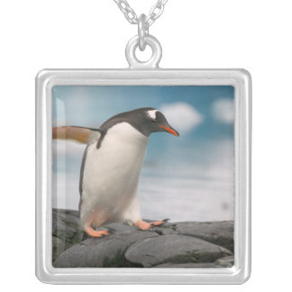 Gentoo penguins on rocky shoreline with backdrop 3 square pendant necklace